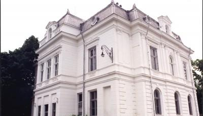 Muzeul de Arta din Pitesti