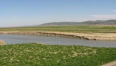 Lacul Galbeni