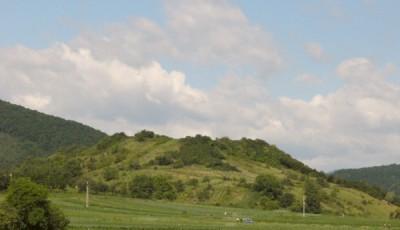 Cetatea Moldovenesti