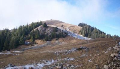 Rezervatia naturala Fanetele montane Todirescu Suceava