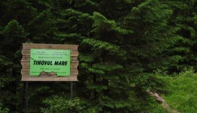 Rezervatia naturala Tinovul Poiana Stampei Suceava