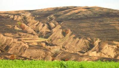 Rezervatia Naturala Peceneaga