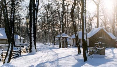 Muzeul satului din Petresti