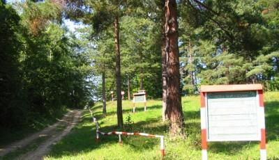 Rezervatia naturala Padurea Cenaru Vrancea