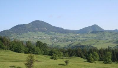 Rezervatia naturala Poiana Muntioru Vrancea