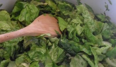 Mancare de salata verde