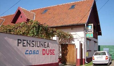 Restaurant Casa Duse Cartisoara