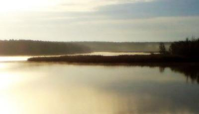 Rezervatia naturala Balta Rovina