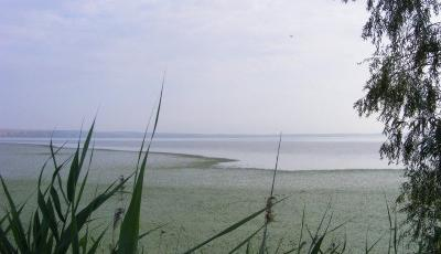 Lacul Oltina