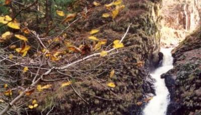 Cascada Covatari